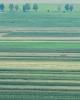 Dau in arenda- concesionez teren agricol bio in tulcea 700 ha
