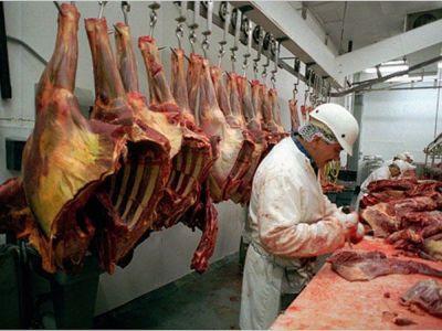 numarul-sacrificarilor-de-animale-in-crestere