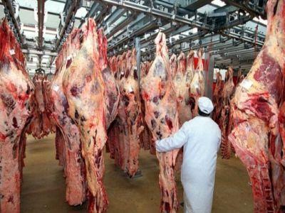 a-crescut-numarul-sacrificarilor-de-bovine-si-pasari
