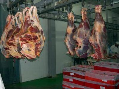 mai-multe-animale-sacrificate-in-abatoarele-romanesti