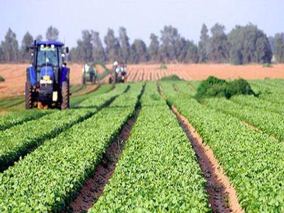 a-crescut-rata-de-absorbtie-a-fondurilor-europene-pentru-agricultura-si-dezvoltare-rurala
