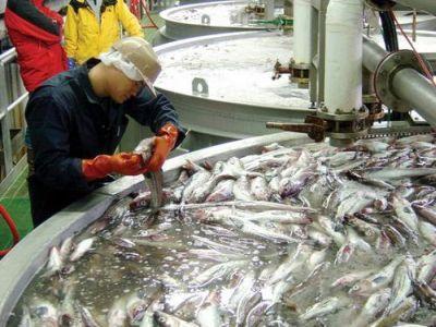 sprijin-financiar-pentru-proiecte-de-inovare-in-domeniul-acvaculturii