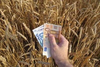 agricultura-romaneasca-din-ce-in-ce-mai-profitabila