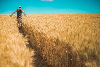 clarificari-afir-pentru-tinerii-fermieri-beneficiari-ai-pndr