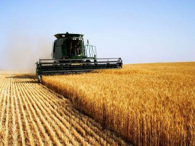 un-oficial-din-cadrul-comisiei-europene-vorbeste-despre-situatia-agriculturii-romanesti