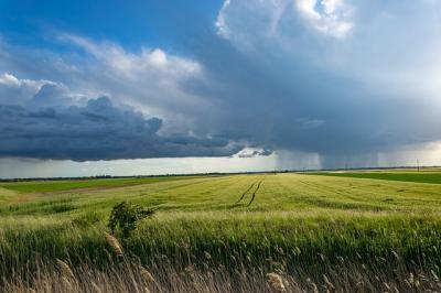 madr-agricultura-ecologica-din-ce-in-ce-mai-preferata-de-fermierii-romani