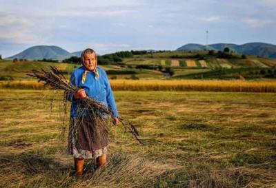 agricultura-nu-a-pierdut-niciun-leu-la-rectificarea-bugetara