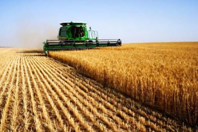 discutii-asupra-strategiei-de-dezvoltare-a-agriculturii-romanesti-pe-termen-mediu-si-lung