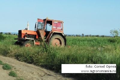 viorica-boboc-madr-asociatiile-agricole-nu-s-au-dezvoltat-in-interesul-membrilor
