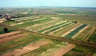 pndr-2014-2020-care-sunt-punctele-tari-ale-agriculturii-romanesti