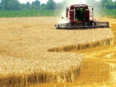 analistii-straini-lauda-progresele-facute-de-agricultura-romaneasca
