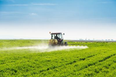 buruieni-problema-care-afecteaza-culturile-de-cereale-paioase