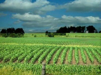 apia-a-dat-startul-platilor-pentru-agromediu