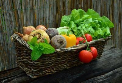 ajutorul-de-minimis-pentru-legumicultori-aprobat