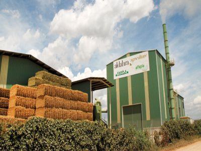 arabii-care-au-cumparat-agricost-anunta-noi-investitii-in-agricultura-din-romania