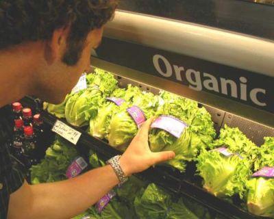 chestionar-european-privind-alimentele-ecologice