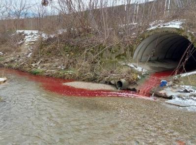 amenda-de-60000-lei-pentru-o-firma-care-a-poluat-cu-sange-si-organe-raul-bascov