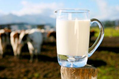 ansvsa-a-comunicat-primele-rezultate-ale-actiunilor-desfasurate-la-nivel-national-pentru-verificarea-laptelui