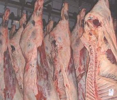 statistici-agricultura-zootehnie-evolutia-numarului-de-animale-in-2012