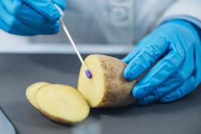 ansvsa-a-aplicat-amenzi-record-in-noiembrie-pentru-industria-agroalimentara
