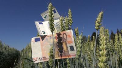 apia-plateste-7600-de-euroha-pentru-legumele-cultivate-in-sere-si-solarii