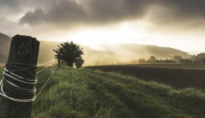 apia-peste-760000-de-fermieri-vor-primi-subventiile