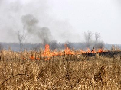 atentionare-a-garzii-de-mediu-privind-arderea-miristilor-a-vegetatiei-uscate-si-a-resturilor-vegetale