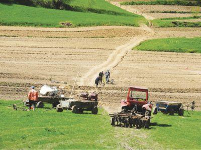 in-atentia-persoanelor-care-isi-arendeaza-terenurile-agricole