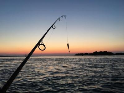 cum-se-acorda-autorizatia-speciala-de-pescuit-in-scop-stiintific