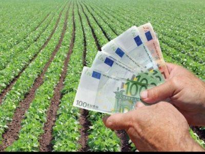 fermierii-ar-putea-primi-avansuri-mai-mari-pentru-platile-directe-si-dezvoltare-rurala