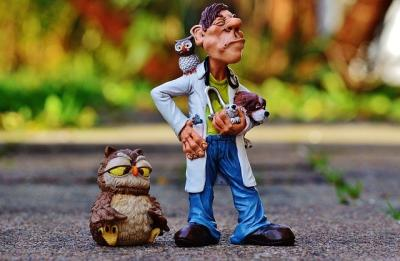medicii-veterinari-avertisment-cu-privire-la-problemele-din-tara