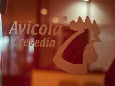 avicola-crevedia-vanduta-catre-grupul-vitall-din-dolj