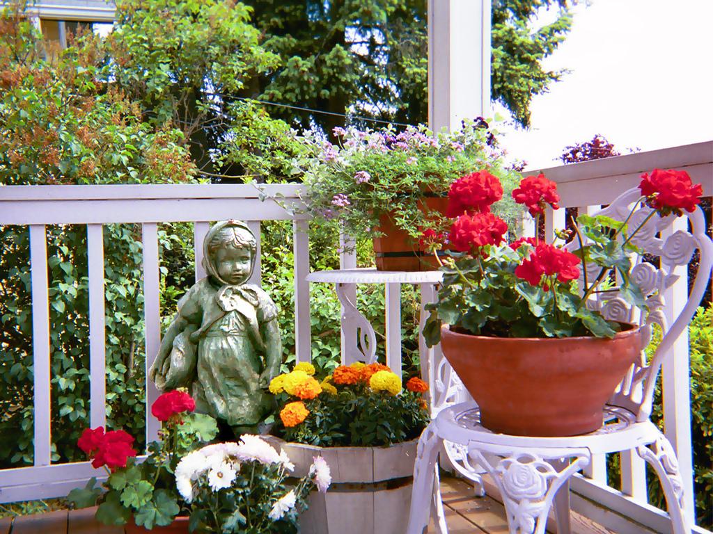 amenajarea-unui-spatiu-verde-in-balcon-amenajarea-balconului