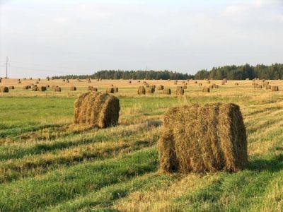 buletin-agrometeorologic-pentru-perioada-15-19-octombrie