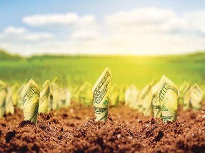 agricultura-devine-un-sector-din-ce-in-ce-mai-profitabil
