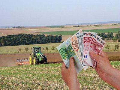 evolutia-creditelor-agricole-in-ultimii-ani