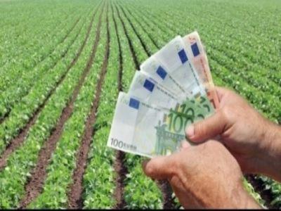 ce-contine-ghidul-solicitantului-pentru-infiintarea-grupurilor-operationale-si-pentruproiectelor-pilot-in-sectorul-agricol-si-pomicol