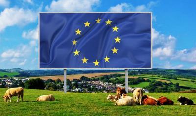 tinerii-fermieri-pot-obtine-50000-de-euro-pentru-o-ferma