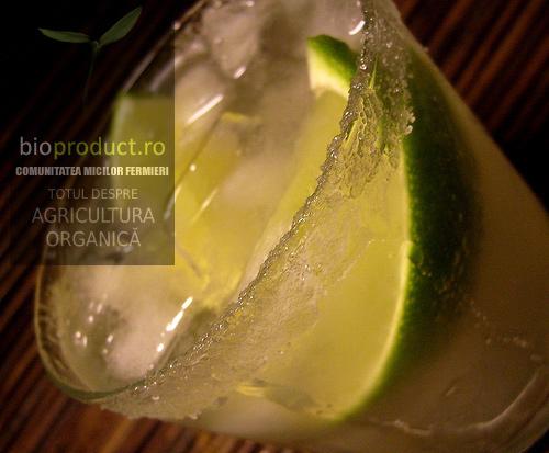 cocktail-cu-suc-de-cactus