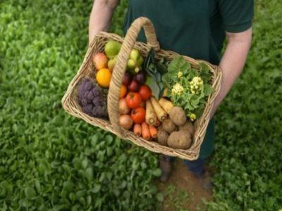 schimbari-necesare-pentru-a-trecerea-la-o-agricultura-100-bio