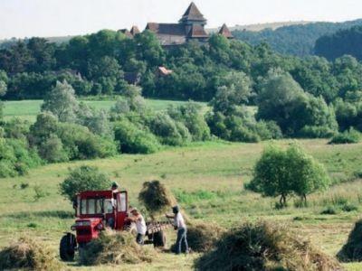 ce-finantari-pot-primi-fermierii-care-protejeaza-mediul