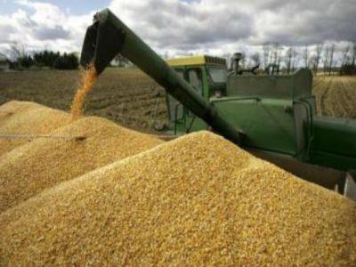romania-are-cele-mai-mari-preturi-la-cereale-din-estul-europei