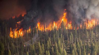 caldura-extrema-si-incendiile-din-zona-arctica-motive-de-ingrijorare-pentru-romani