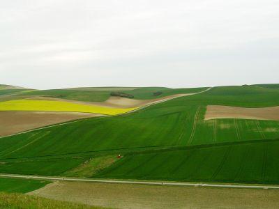 buletin-agrometeorologic-pentru-perioada-12-18-mai
