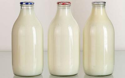 creste-productia-de-lapte-a-romaniei