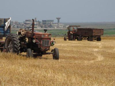 """termenul-de-""""cooperativa-agricola""""-inca-ii-sperie-pe-fermierii-care-nu-au-uitat-de-cap-uri"""