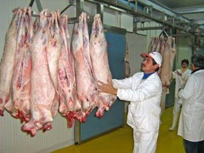 ansva-in-negocieri-cu-tarile-arabe-in-vederea-demararii-exporturilor-de-carcase-de-ovine