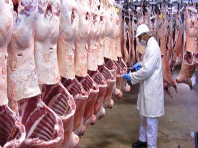 sase-milioane-de-euro-pentru-promovareaconsumului-de-carne-de-oaie-si-capra