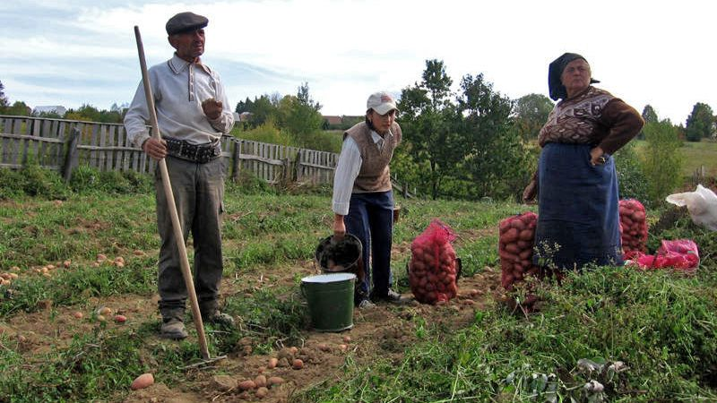 fonduri-europene-federatia-agrostar-a-incheiat-proiectul-dezvoltarea-initiativelor-antreprenoriale-in-mediul-rural