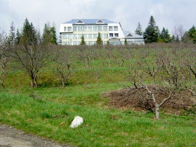 sindicalistii-din-agricultura-reclama-declinul-cercetarii-agricole-romanesti